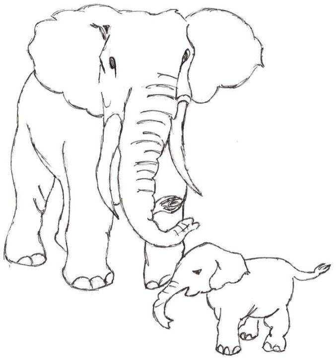 Barbara gravure galerie de dessin originaux - Elephant image dessin ...