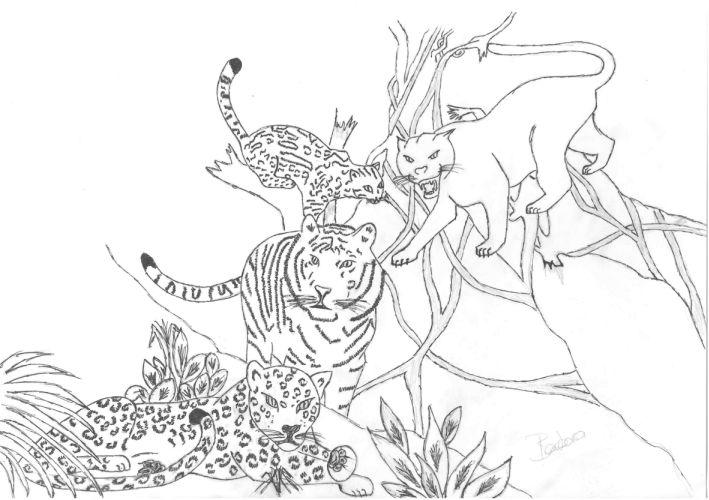 Barbara gravure galerie de dessin originaux - Jaguar dessin ...